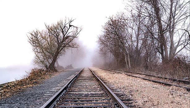 Tracks - Kingston Point Park by Tom Romeo
