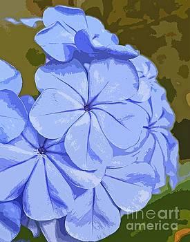 Sharon Williams Eng - True Blue