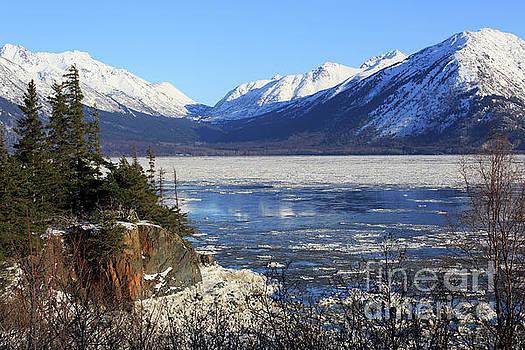Turnagain Arm and Chugach Range from Sunrise Alaska by Louise Heusinkveld