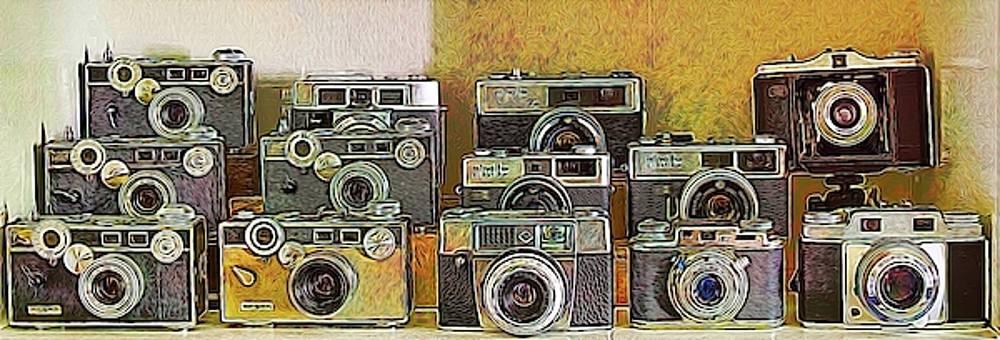 Vintage Cameras by Robert Meyerson