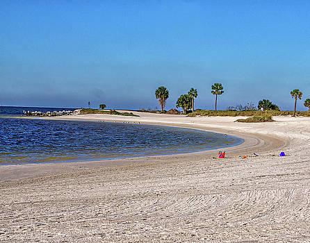 Walk On The Beach by Dennis Dugan