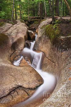 Waterfall at the Basin by Sharon Seaward