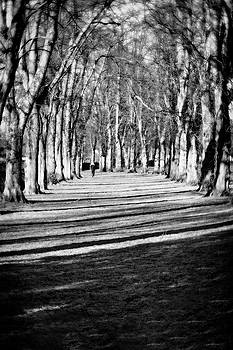 Jeremy Lavender Photography - West End Park