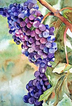 Wine on the Vine by Beth Fontenot