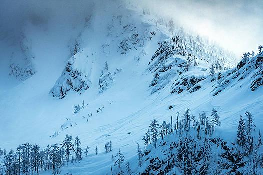 Winter Blues by Joy McAdams