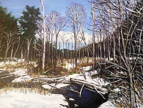 Winter Brook, Mt. Tom by Richard Nowak