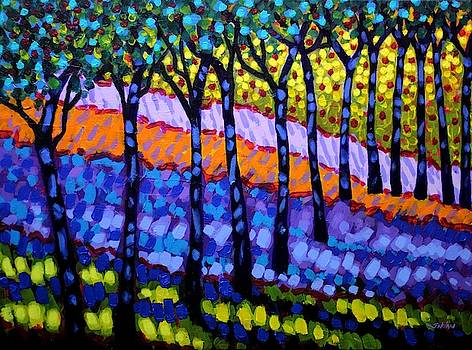 12 Trees by John  Nolan