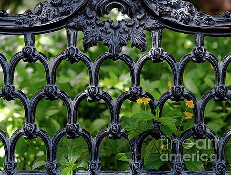 Dale Powell - Old School Iron Gardens