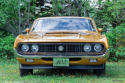 1970 Ford Torino GT by Ken Morris