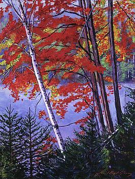 Algonquin Lake Fall by David Lloyd Glover