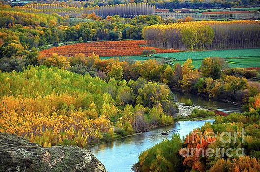 RicardMN Photography - Autumn Colors On The Ebro River