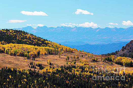 Autumn in the Pike National Forest of Colorado by Steve Krull