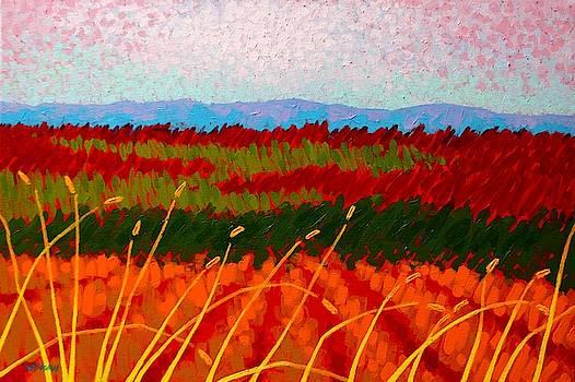 Blue Hills by John  Nolan