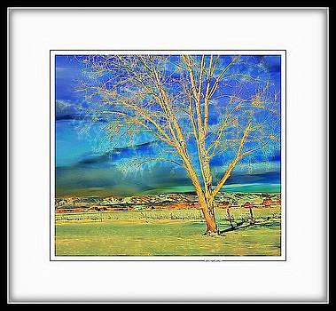 Colorado Landscape by Lenore Senior