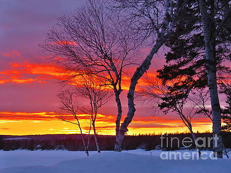 Day's end by Brenda Ketch