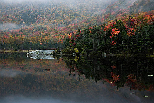Foggy Foliage Morning by Jeff Folger