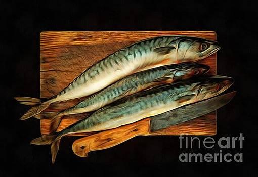 Fresh mackerels by Michal Boubin