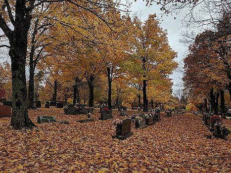 Halloween at Maplewood Cemetery by Julie Harrington