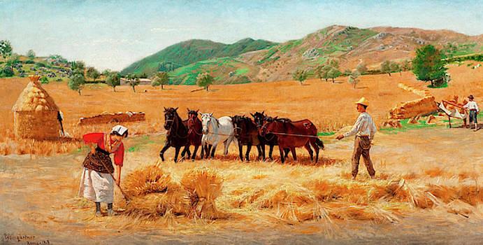 Harvest In Anticoli by Pedro Weingartner