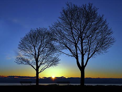 Lake Sunrise by Steve Bell