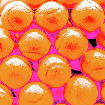 Pop Art Tennis Balls by Le Comp