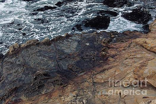 Rocks and Water by Katherine Erickson