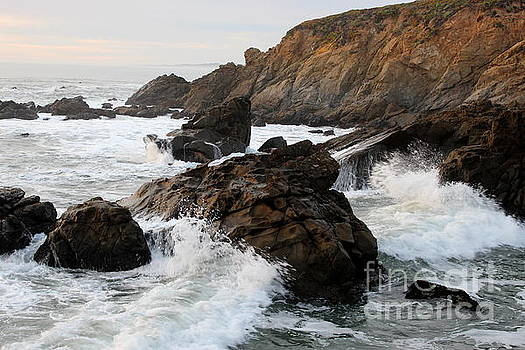 Rocky Shore by Katherine Erickson