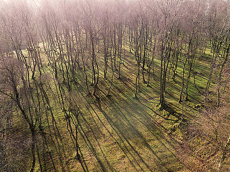 Stunning abstract aerial drone landscape image of early morning  by Matthew Gibson