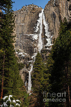 The iconic Yosemite Falls in the winter. by Jamie Pham