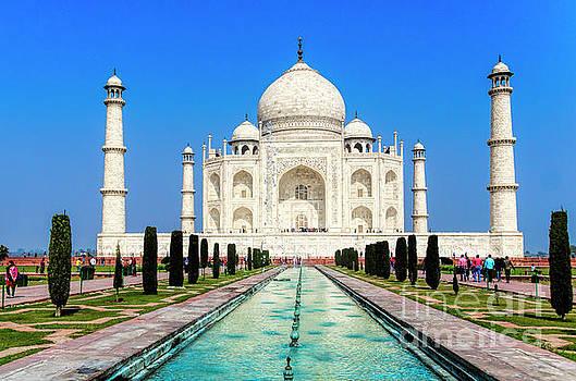 The Taj Mahal by Pravine Chester