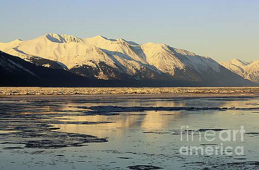 Turnagain Arm and Kenai Mountains Alaska by Louise Heusinkveld