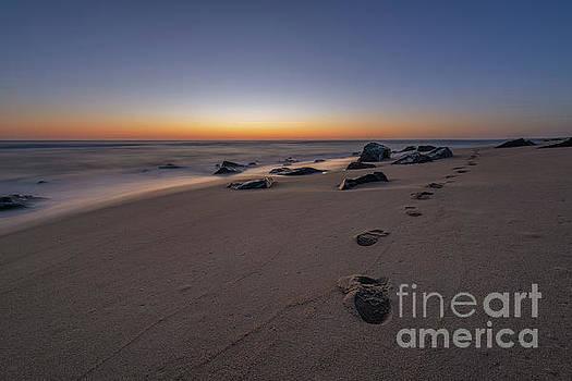 Walk Along The Beach  by Michael Ver Sprill