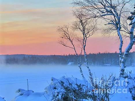 Winter sky by Brenda Ketch