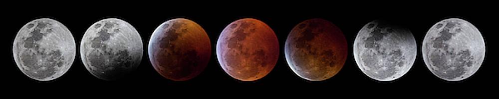 2019 Lunar Eclipse Progression by Dennis Sprinkle