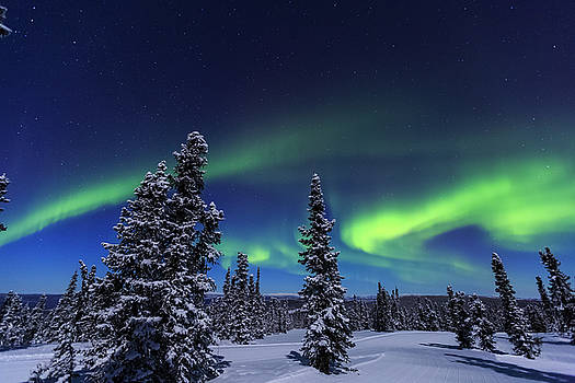 Aurora Borealis, Northern Lights by Stuart Westmorland