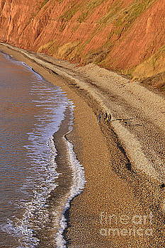 Beach by Andy Thompson