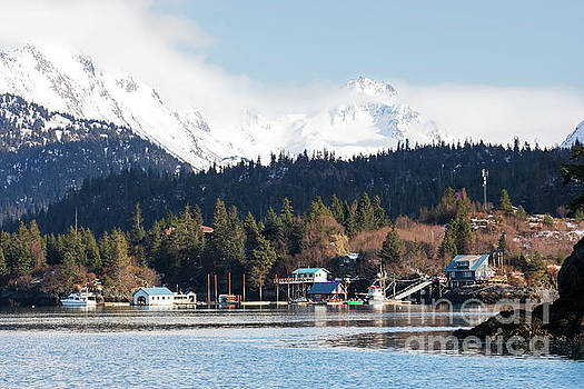 Halibut Cove Kenai Peninsula Alaska by Louise Heusinkveld