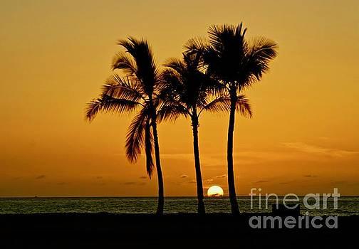 Hawaiian Sunset by Craig Wood