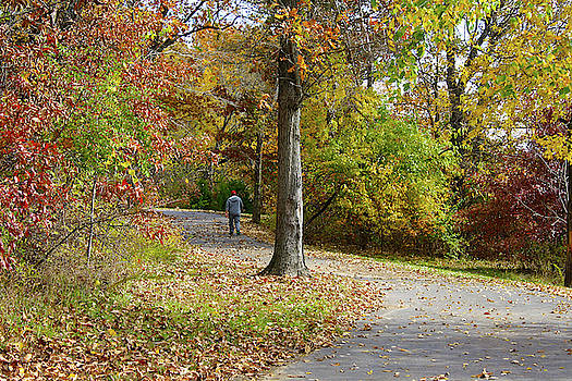 Lake Remembrance Trail by Ellen Tully