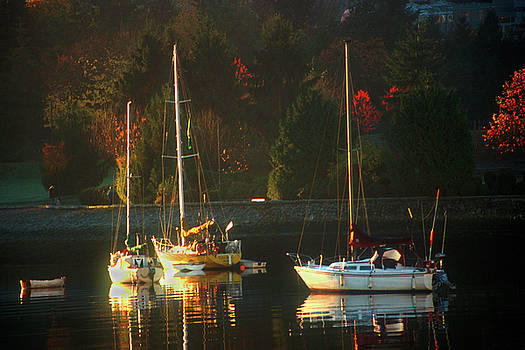 3 sail boats in Coal Harbour Creek Vancouver by David Smith