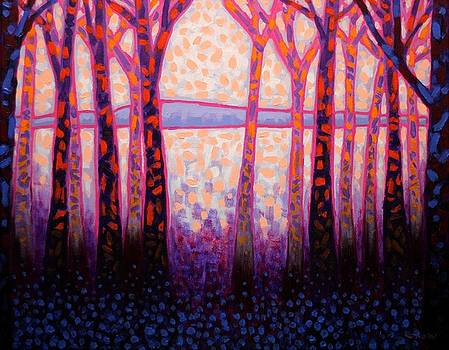 Shadow Trees  by John  Nolan