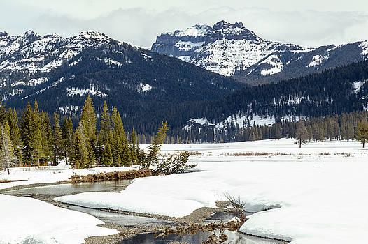 Soda Butte Creek by Michael Chatt