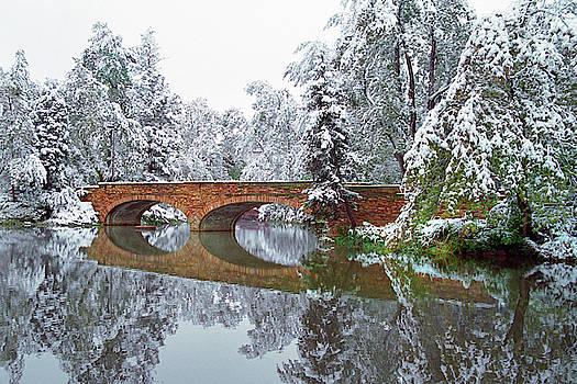 Varsity Pond Bridge by Lee Craker