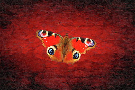 Digital painting of a butterfly by Vicen Fotografia