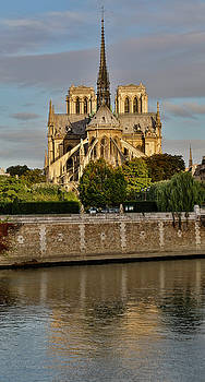Morning Light On Cathedral Notre Dame by Darrell Gulin