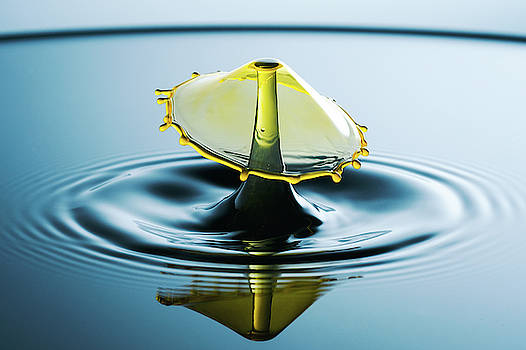 Water Drop by Nicole Young