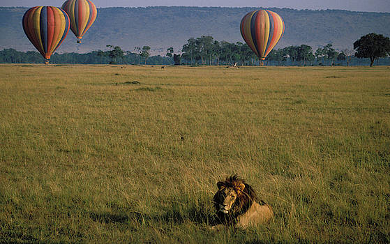 Balloon Safari in Kenya by Carl Purcell