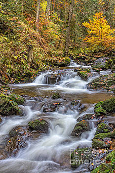 Cascades And Waterfalls by Bernd Laeschke