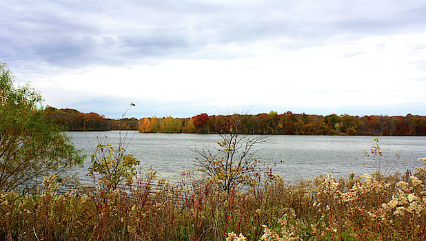 Lake Remembrance by Ellen Tully