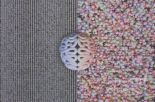 Left Right Brain Concept by Allan Swart